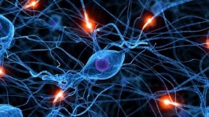Cazul Skripal: Serviciile secrete germane au procurat în anii '90 un eşantion neurotoxină Noviciok