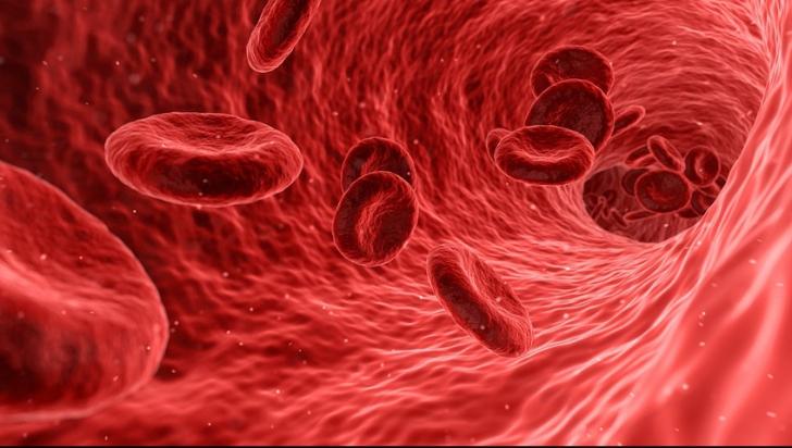 Vitamina care-ți poate întineri vasele de sânge