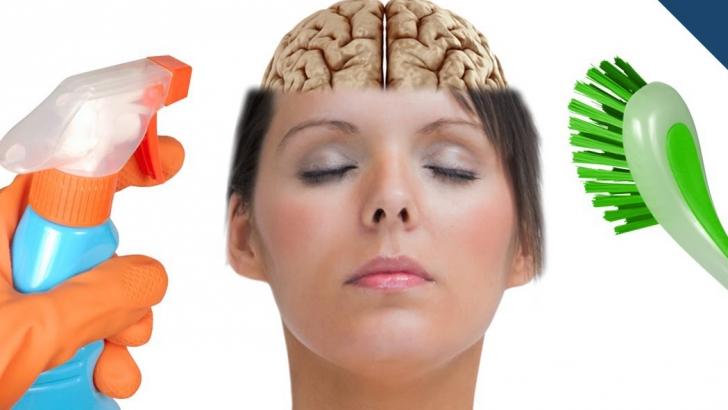 Creier auto-devorat