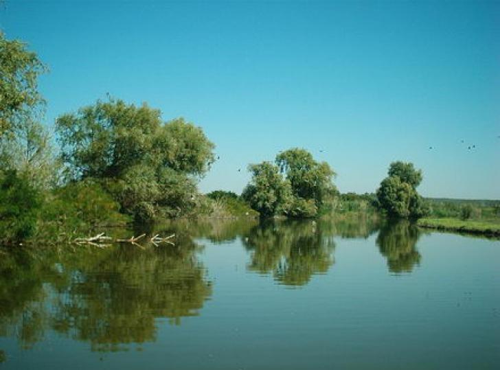Cadavrul unui pescar, găsit pe fundul unui lac, în apropiere de Constanţa
