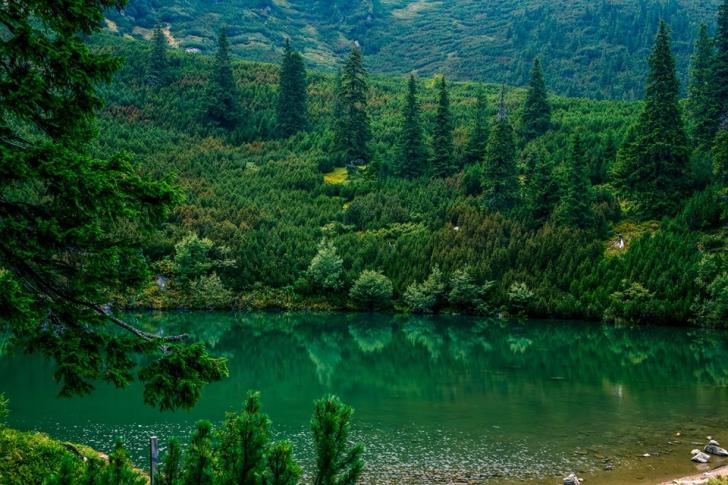 Lacul Iezerul Șureanu