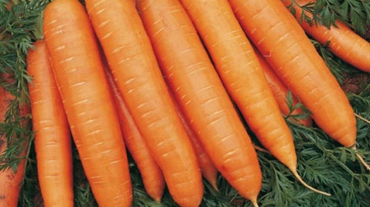 De ce să mănânci morcovi în fiecare zi - motivul uimitor