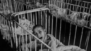 Masacrul din Spitalul pentru copii neuropsihici cronici Siret: Izolaţi pe un câmp şi lăsaţi să moară