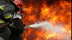 Incendiu de proporţii în Prahova. O fermă cu peste 1000 de purceluşi s-a făcut scrum