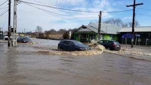 Ploile abundente au făcut ravagii în multe zone din țară