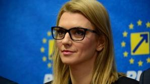 """Gorghiu, despre mitingul PSD: """"Este pentru susţinerea domnului Dragnea"""""""