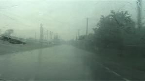 Furtuna a făcut ravagii la Arad