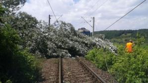 Traficul feroviar afectat din cauza furtunilor. Unde sunt probleme cu circulaţia trenurilor