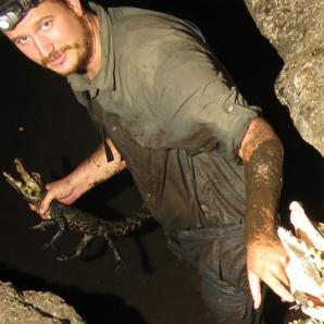 Descoperire fabuloasă: specie de crocodili unici în lume, cu o culoare ciudată