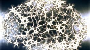 4 cauze care îţi încetinesc şi distrug creierul