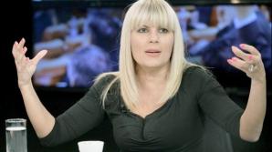 Verdict pentru Elena Udrea în dosarul Gala Bute