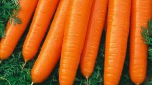 De ce să mănânci morcovi în fiecare zi. Nu îţi va veni să crezi ce se poate întâmpla