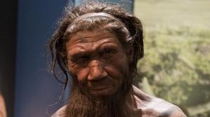 Omul de Neanderthal, mai inteligent de cât se credea. Ce au descoperit cercetătorii