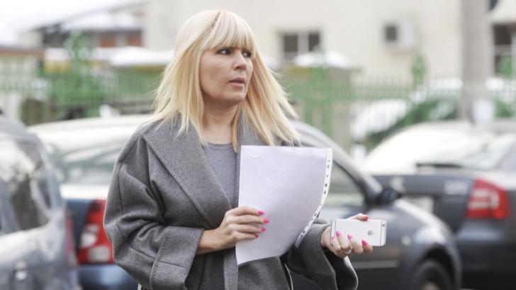 Elena Udrea a vândut acțiuni în valoare de 500.000 de euro înainte de sentința în dosarul Gala Bute