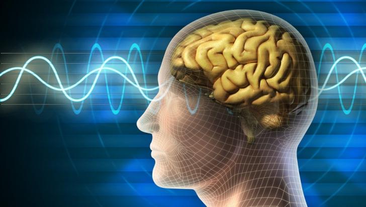 Ce se întâmplă în creierul nostru atunci când ascultăm muzica preferată. Răspunsul te va şoca