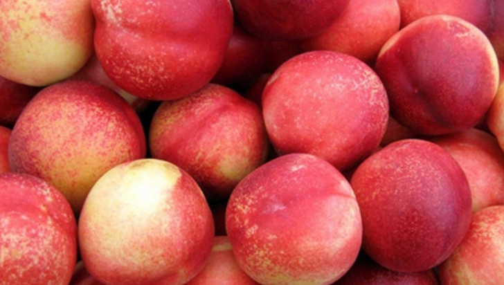 De ce nu au nectarinele puf. Adevărul pe care puţini îl ştiu