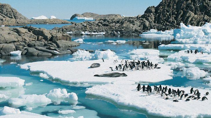 Sfârşitul este aproape? Ce au descoperit cercetătorii în Antarctica