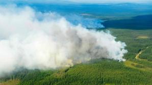 Incendii de pădure în Suedia. Avertismentul MAE pentru rezidenţii şi turiştii români