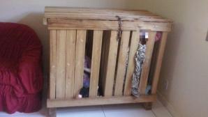 Copii închiși în cutie