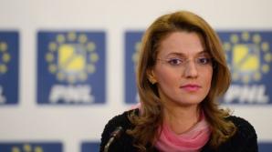 Gorghiu: PNL va contesta la CCR modificările aduse Codului penal