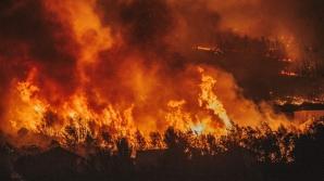 Alertă în SUA: incendiile de vegetaţie se extind cu repeziciune