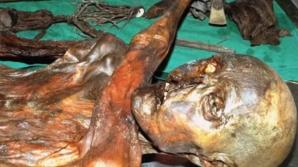 Cercetătorii au aflat care a fost ultima masă a lui Otzi, Omul Gheţurilor