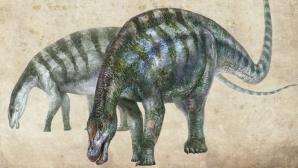 Un nou dinozaur a fost descoperit