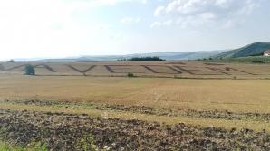 Mesajele anti-PSD trasate cu tractorul pe mirişte se extind: #Vă vedem / Foto: Facebook