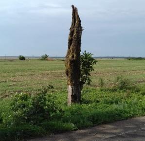 Imagini de coşmar: o tornadă a făcut ravagii