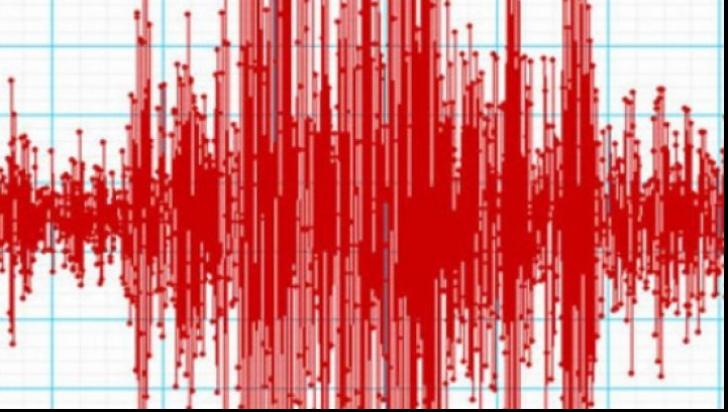 Cutremur în Vrancea, miercuri dimineaţă