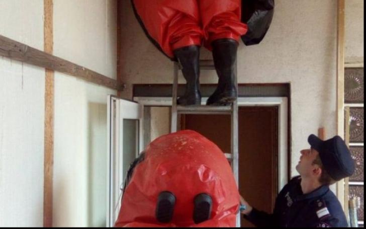 Intervenţie neobişnuită la Ergheviţa. Pompierii chemaţi să alunge mai mulţi gărgăuni
