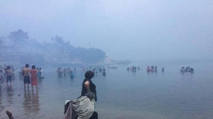 <p>Oameni și animale fug din fața flăcărilo, în Grecia</p>