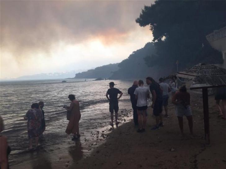 Oameni și animale fug din fața flăcărilo, în Grecia