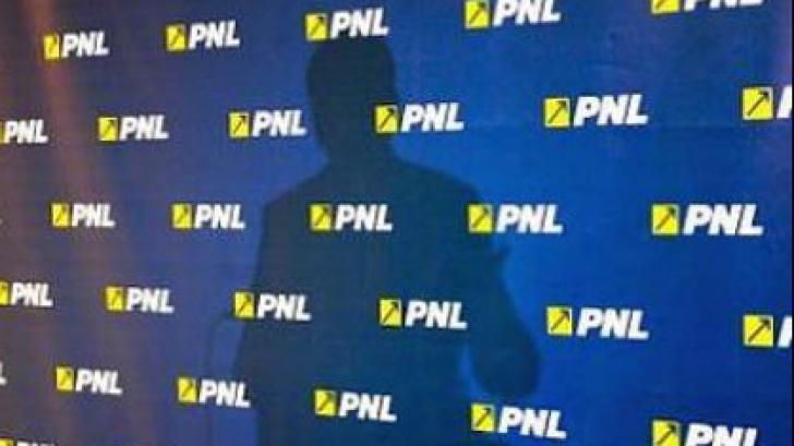 PNL îl somează pe Dragnea să nu mai intoxice opinia publică cu fumigene diversioniste