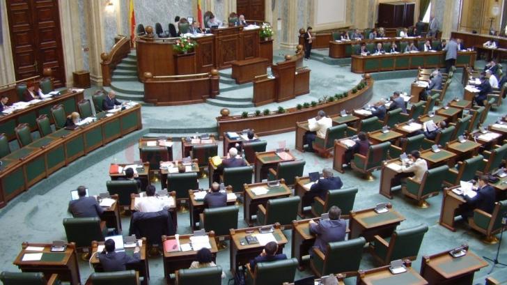 Senatul a decis: campania electorală, permisă în ziua alegerilor