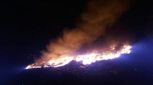 Incendiu violent la groapa de gunoi din Arad