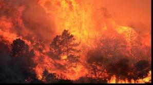 Când se va opri incendiul din California. Previziunile sunt cutremurătoare