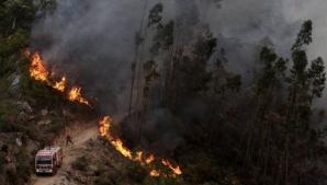 Începutul APOCALIPSEI?! După Grecia, un incendiu MAJOR de vegetaţie a izbucnit în Portugalia