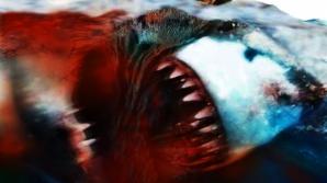 Descoperire şocantă făcută de oamenii de ştiinţă: mega-rechinul