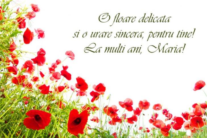 felicitari de sf maria Mesaje şi felicitări de Sfânta Maria: La mulţi ani, Maria, Mariana  felicitari de sf maria
