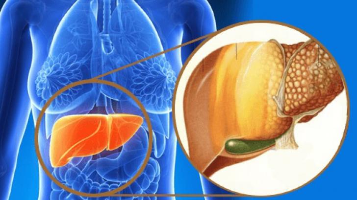 Ingredientul miraculos care reface ficatul si reduce colesterolul
