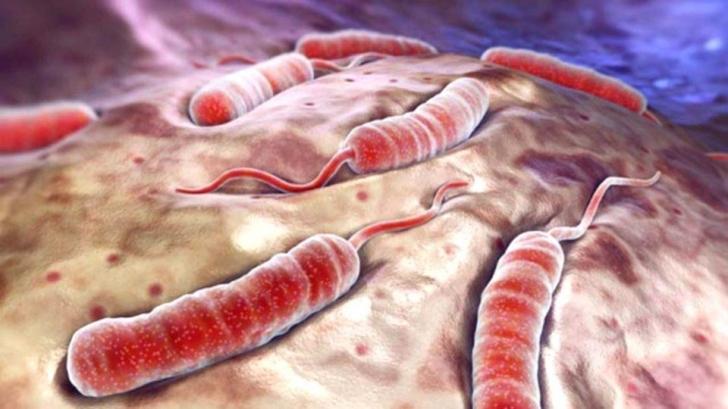 Vremea holerei? 59 de cazuri de boală deja confirmate