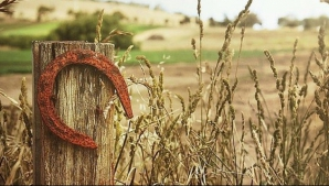 Horoscop financiar 24-30 septembrie. Zodia care ajunge la sapă de lemn. Lipsuri, greutăţi