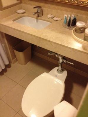 O toaletă construită cu imaginație