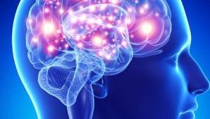 Ce nu ştii despre creierul tău. Îţi va schimba viaţa