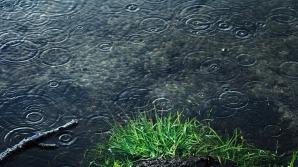 ALERTĂ METEO de fenomene EXTREME imediate. Cod GALBEN de ploi şi vijelii