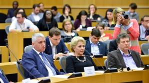 Mai multe ONG-uri îi cer lui Dăncilă măsuri urgente pentru organizarea corectă a referendumului
