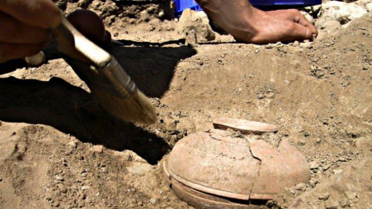 Au descoperit o oală veche de 800 de ani, plină cu seminţe. Când au văzut ce a răsărit, au îngheţat!