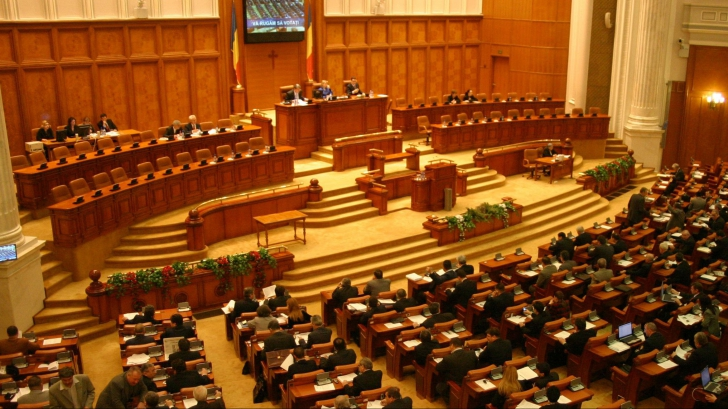 Camera a respins înfiinţarea comisiilor de anchetă privind pesta porcină şi violenţele din 10 august
