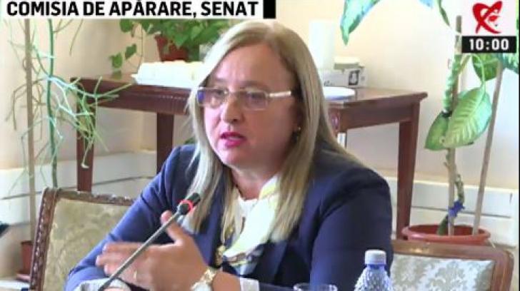 Simulare de audiere la Comisia de Apărare din Senat. Întrebările Opoziției, blocate de membrii PSD